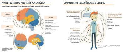 Cerebro-2.png